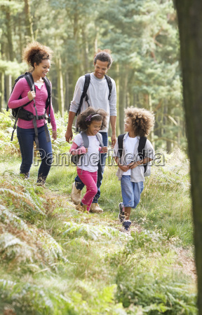 family, group, hiking, in, woods, together - 19408912