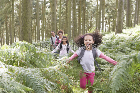 family, group, hiking, in, woods, together - 19408968