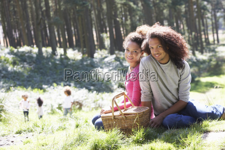 family, having, picnic, in, countryside - 19408888