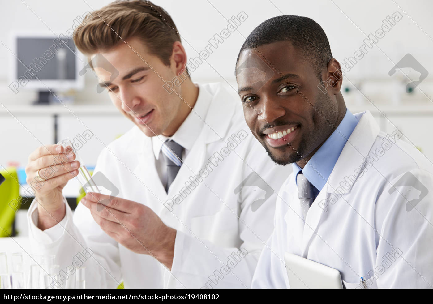 two, technicians, working, in, laboratory - 19408102