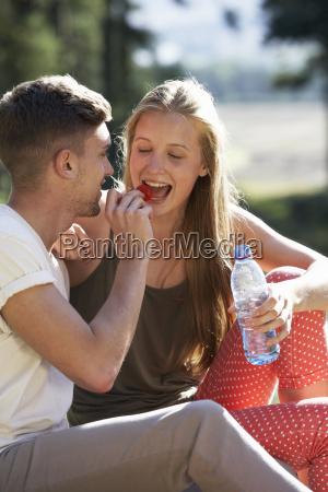 young, couple, enjoying, picnic, in, countryside - 19408724