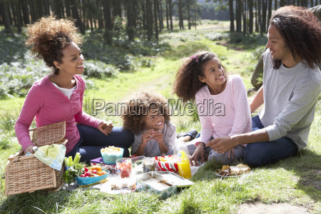 family, having, picnic, in, countryside - 19409064