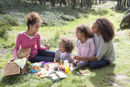 family, having, picnic, in, countryside - 19409066