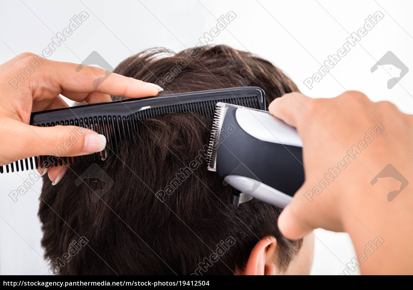 hairdresser, cutting, man's, hair, with, electric - 19412504