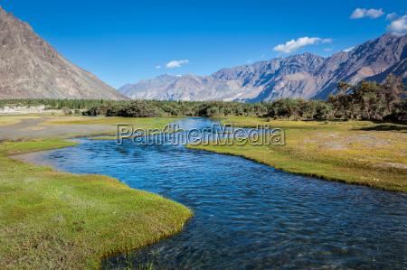stream hunder nubra valley ladakh india