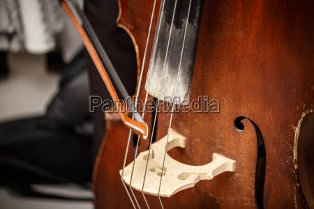double bass wooden musical instrument