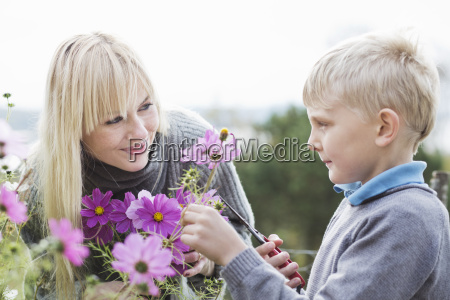mother and son cutting organic flowers