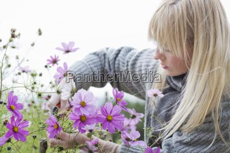 mid adult woman cutting organic flowers
