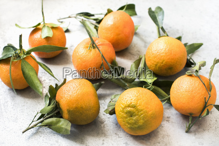 high angle view of oranges with