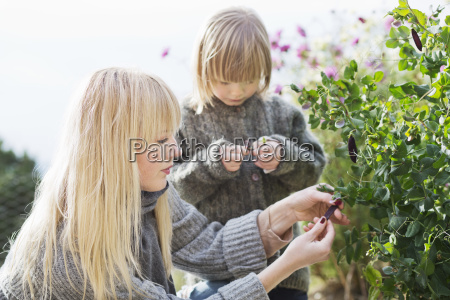 mid adult woman and son tending