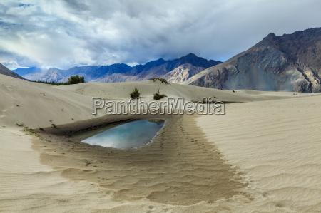 sand dunes hunder nubra valley ladakh