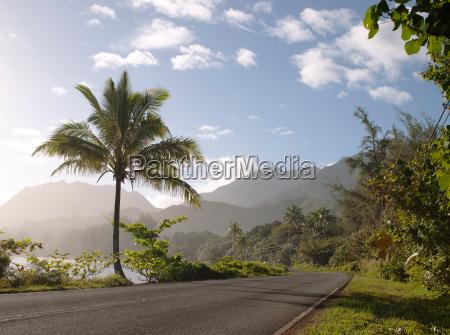 a road running past hanalei bay