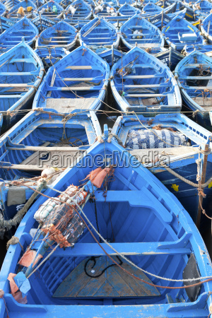 rows of blue fishing boats anchored