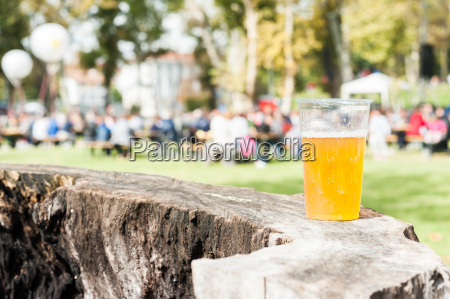 plastikowy kubek piwa na pniu drzewa
