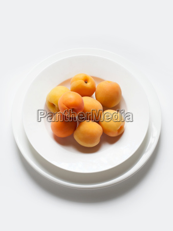 still life with bowl of apricots