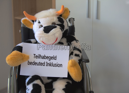 plush cow sitting in a wheelchair