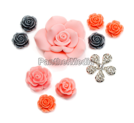decorative roses on a white background