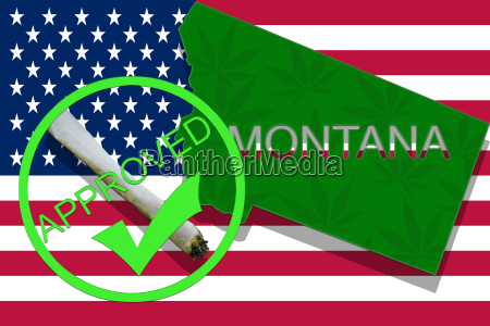 montana on cannabis background drug policy