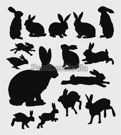 rabbit action silhouette