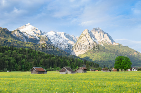 bavarian serene landscape with snowy alps