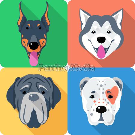 set 9 dog head icon flat