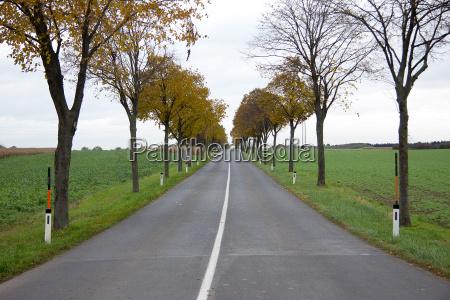 asphalt road between fields and a