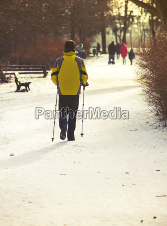 nordic walking in the park winter