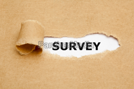 survey ripped paper concept