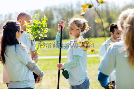 group of volunteers planting trees in