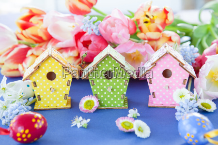 small, colorful, bird, house - 20099156