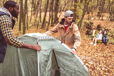 men, pitching, tent, in, autumn, forest - 20115014