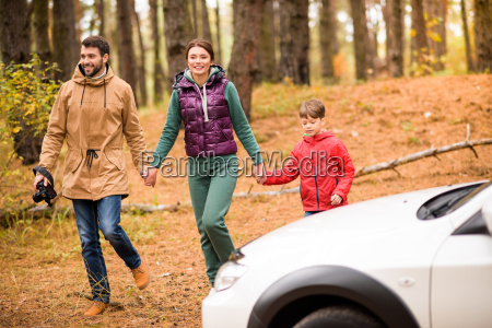 family, walking, in, autumn, forest - 20116401