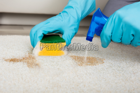 person, cleaning, stain, with, sponge, on - 20118031