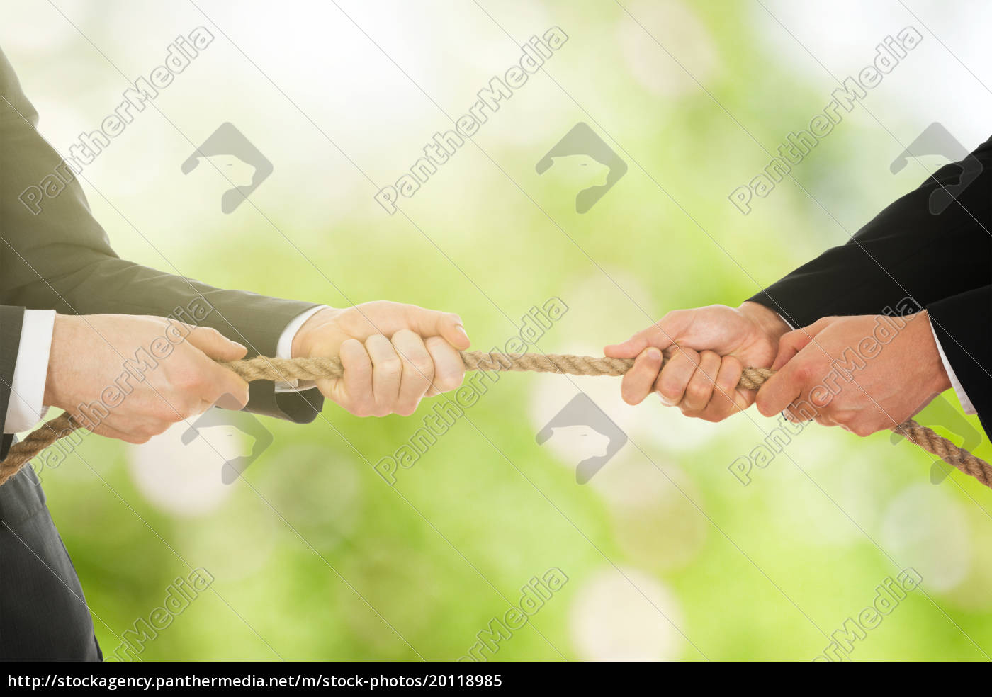 two, businessman, pulling, rope - 20118985