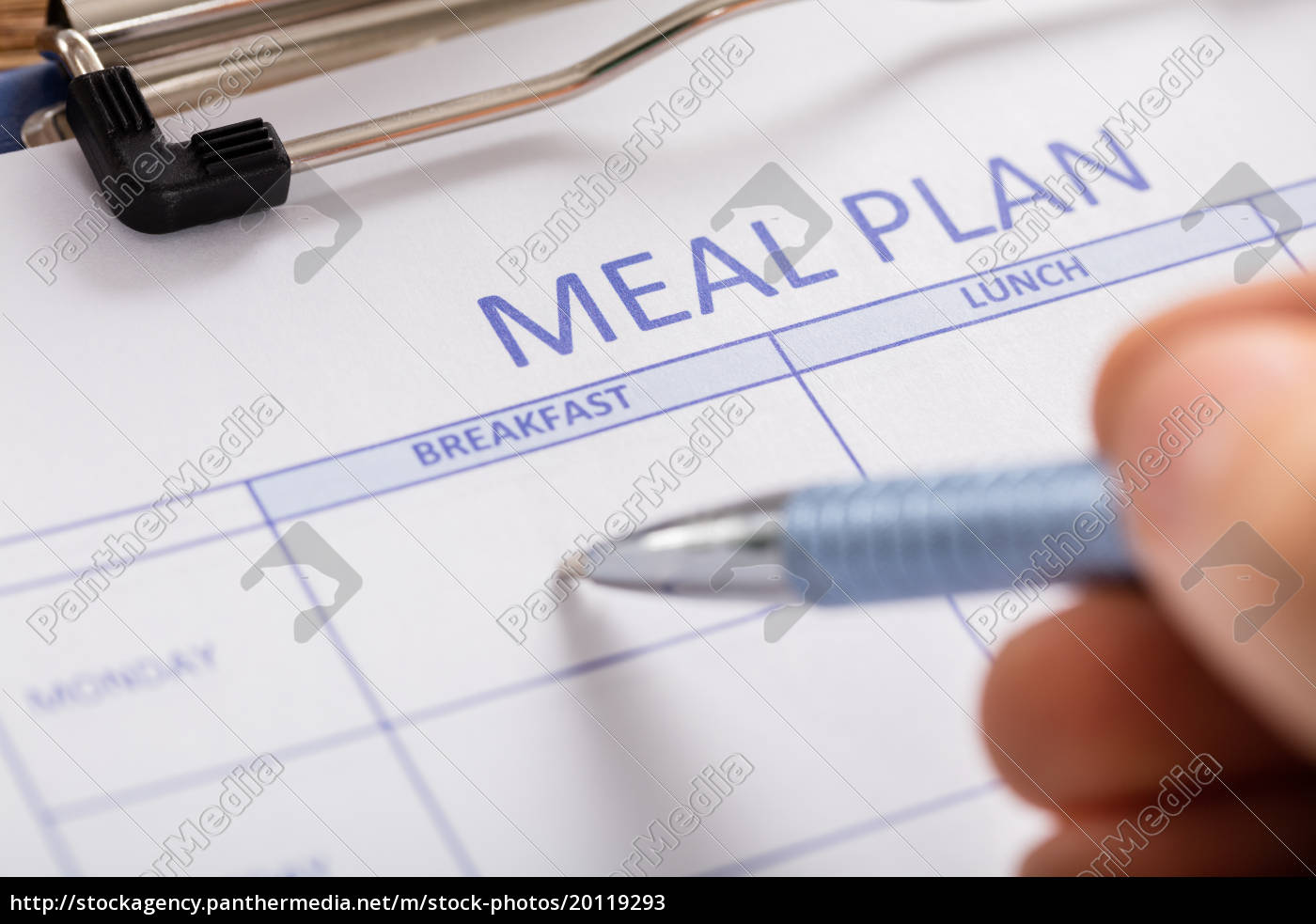 person, hand, filling, meal, plan, form - 20119293