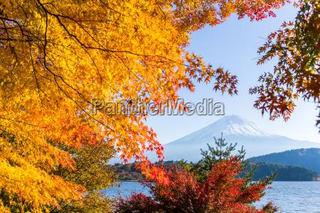 lake kawaguchiko and mountain fuji