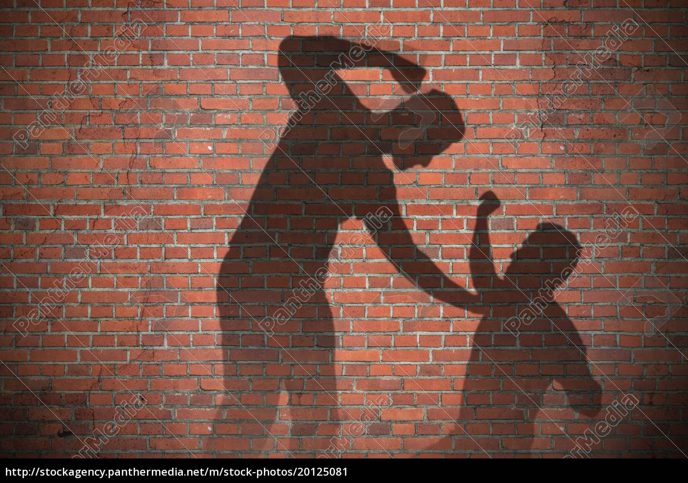 shadow, of, two, men, fighting - 20125081