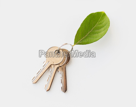 close, up, of, house, keys, and - 20153701