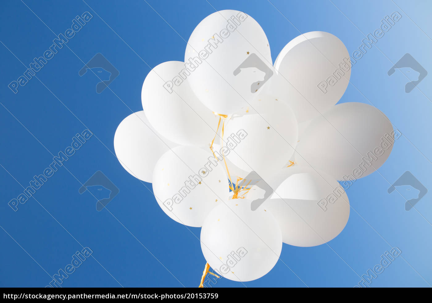 close, up, of, white, helium, balloons - 20153759