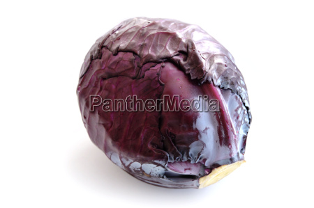 black cabbage pictures on a white