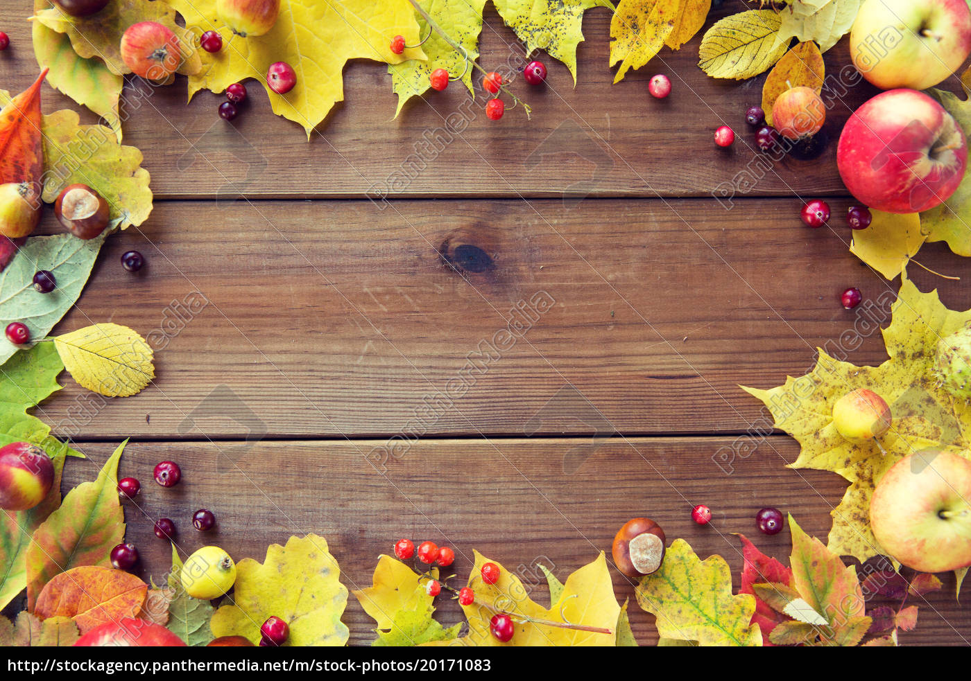 frame, of, autumn, leaves, , fruits, and - 20171083