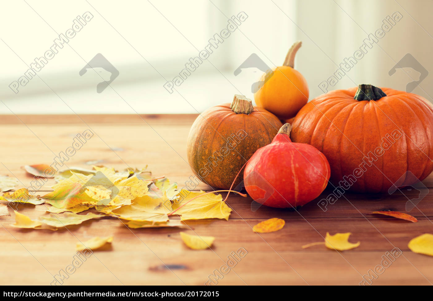 close, up, of, pumpkins, on, wooden - 20172015