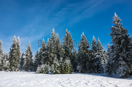 winter in the giant mountains in