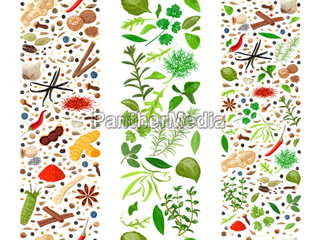culinary herbs and spices organised in
