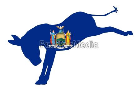 new york democrat donkey flag