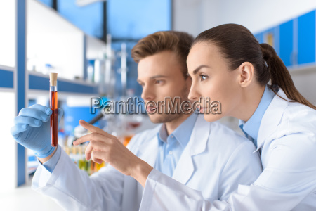 side view of concentrated scientists examining
