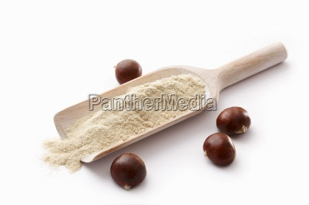 chestnut flour on a wooden scoop