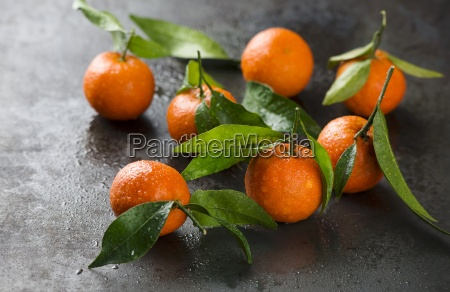 several tangerines with leaves