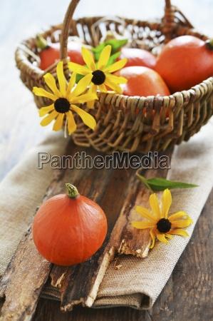 small hokkaido pumpkins in a basket