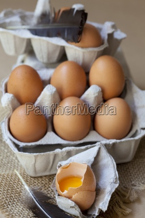 fresh organic eggs in an egg